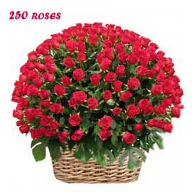 Valentin cake flower delivery in kanpur