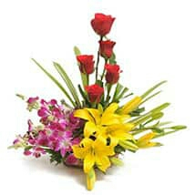 Greeting,gift,cake,flower delivered to kanpur
