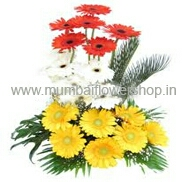 florist cake flower delivery in kanpur
