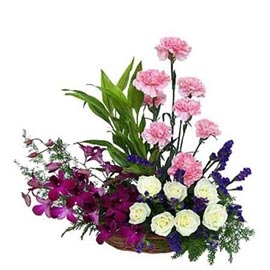 valentine's Day gifts flowers delivery in kanpur