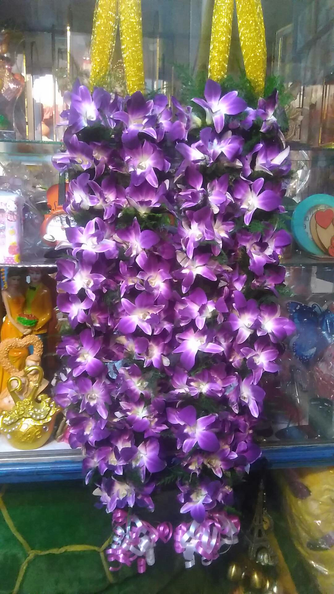 orchid Jaimal in kanpur