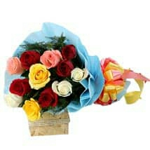 best fresh roses in kanpur
