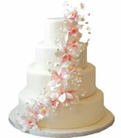 kanpur florist cake,gift,flowers delivery in kanpur