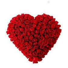 your order to mother,s day gift will be Delivered in kanpur