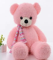 soft toys Taddy delivery in kanpur