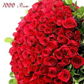 online flower delivery in kanpur